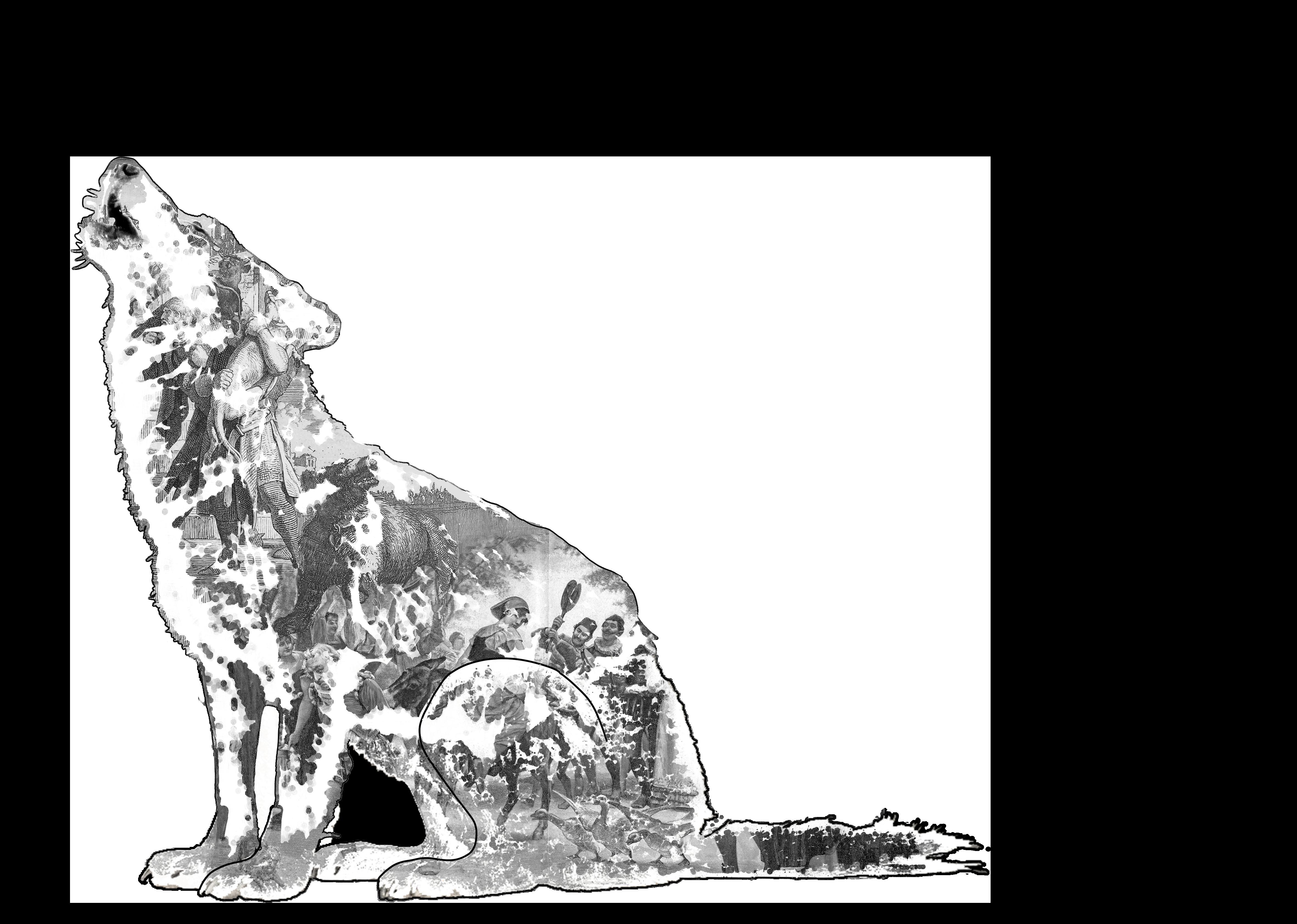190320_Wolf_Key-Visual_heulender-Wolf-GRoßbilder_transparent